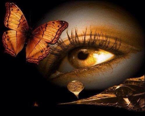 Credo che se si guardasse sempre il cielo, si finirebbe per avere le ali.(Gustave Flaubert)