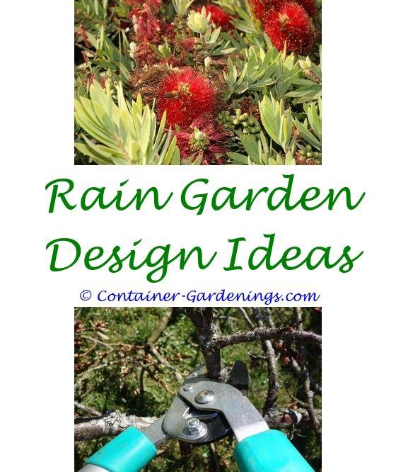 cactus garden ideas olive garden host - Olive Garden Host Pay