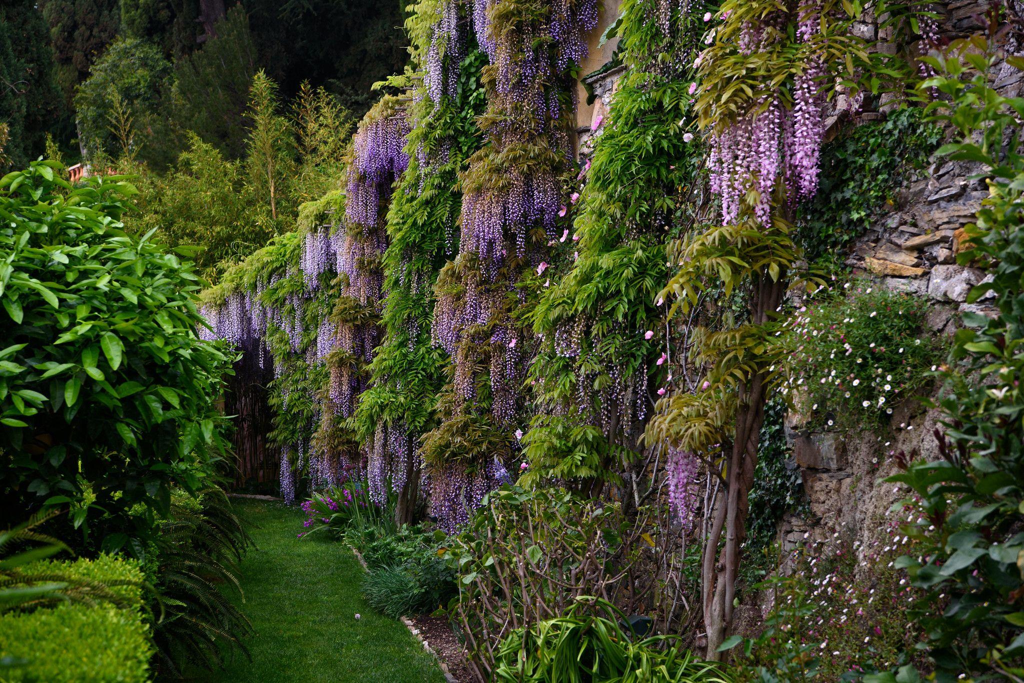 Alassio Giardini di Villa della Pergola Jardins