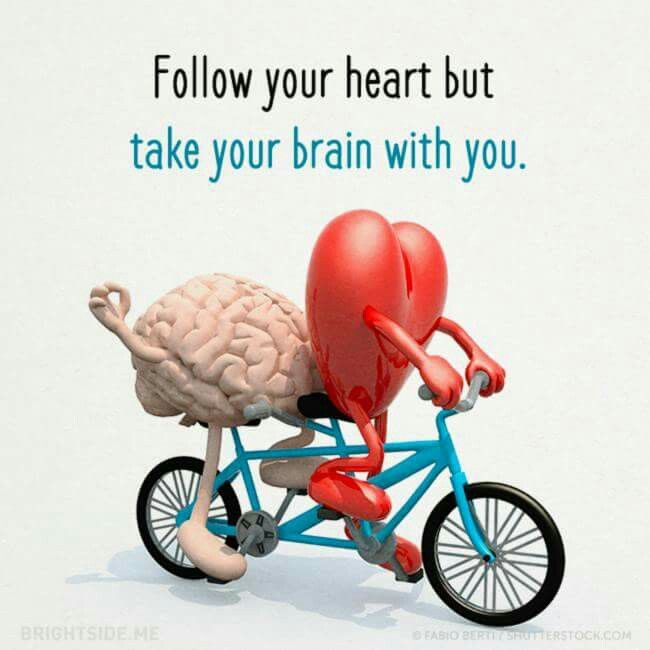 Follow Heart Or Mind Quotes: Follow Your Heart But Take Your Brain