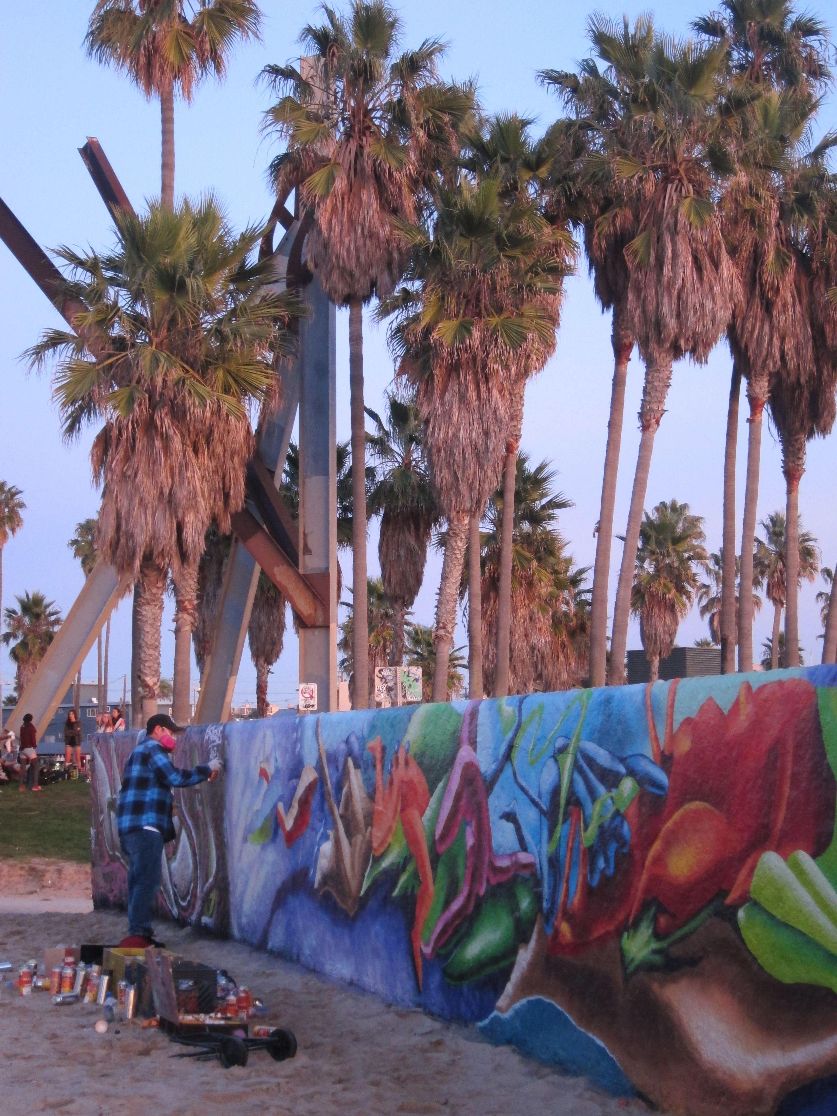Venice Beach Graffiti Wall Http Adventuresinlaandbeyond Tumblr Com Post 15546578766 Sunday Sunset At The Venice Beach Graf Graffiti Wall Street Art Graffiti