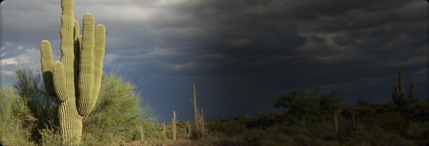 Extreme arizona premier arizona offroad rental company