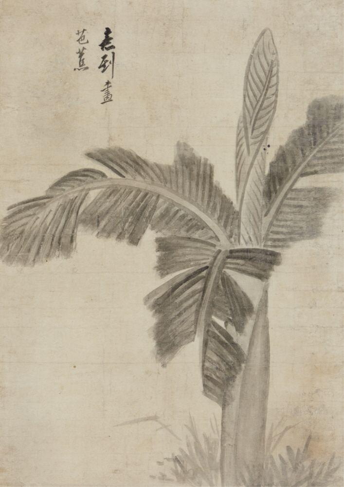 sumi-no-neko:    정수영(鄭遂榮;1743-1831)  파초도 Banana Tree