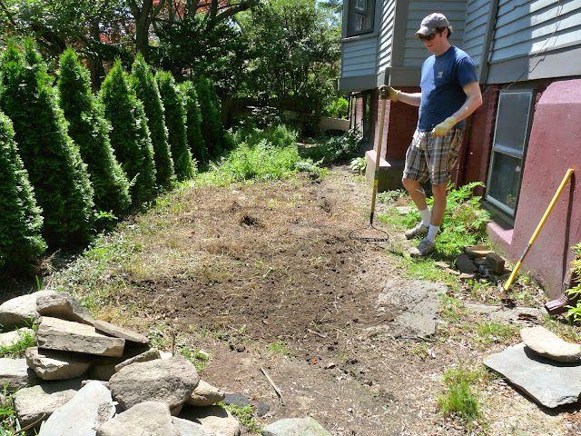 C mo hacer un jard n desde el principio paso a paso y con for Como construir un jardin vertical paso a paso