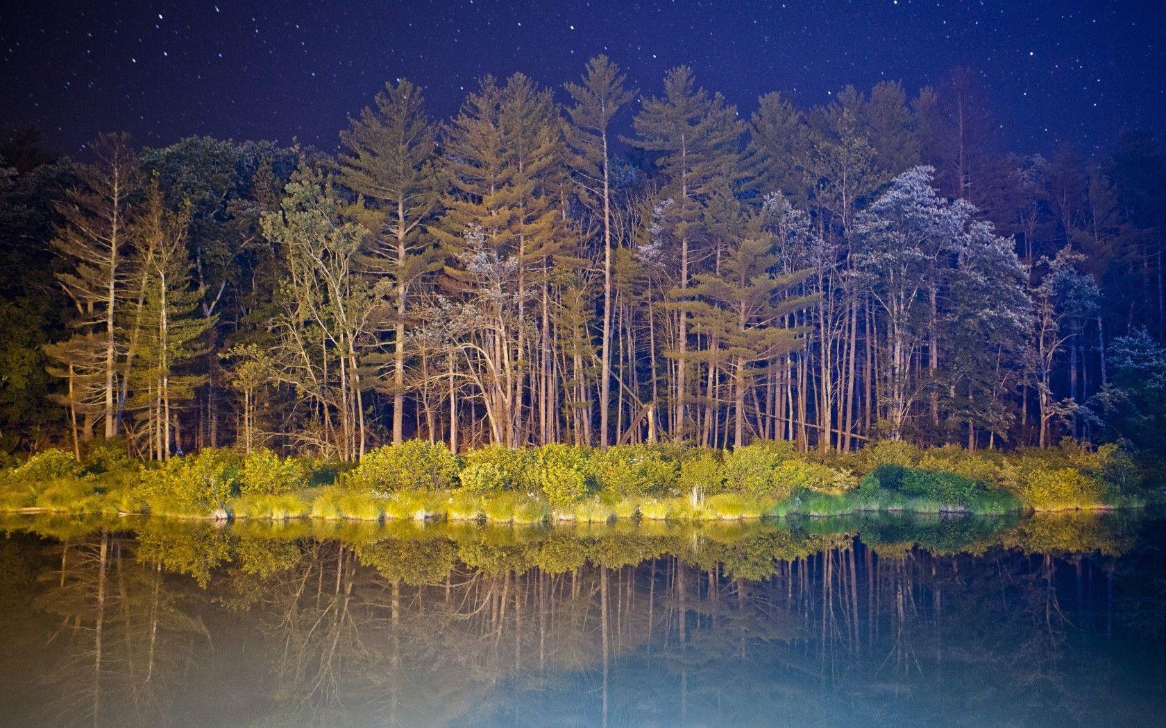 Скачать обои ночь, звезды, свет, небо, деревья, раздел пейзажи в разрешении 3966x2644