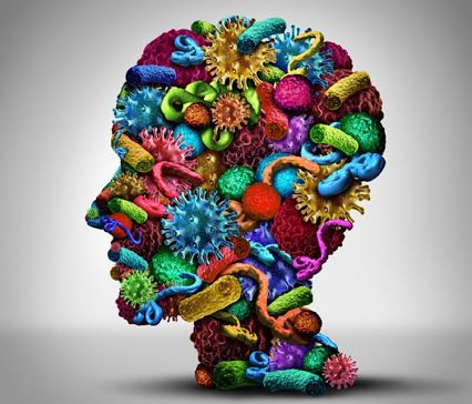 Neuroscience – Collections – Google+