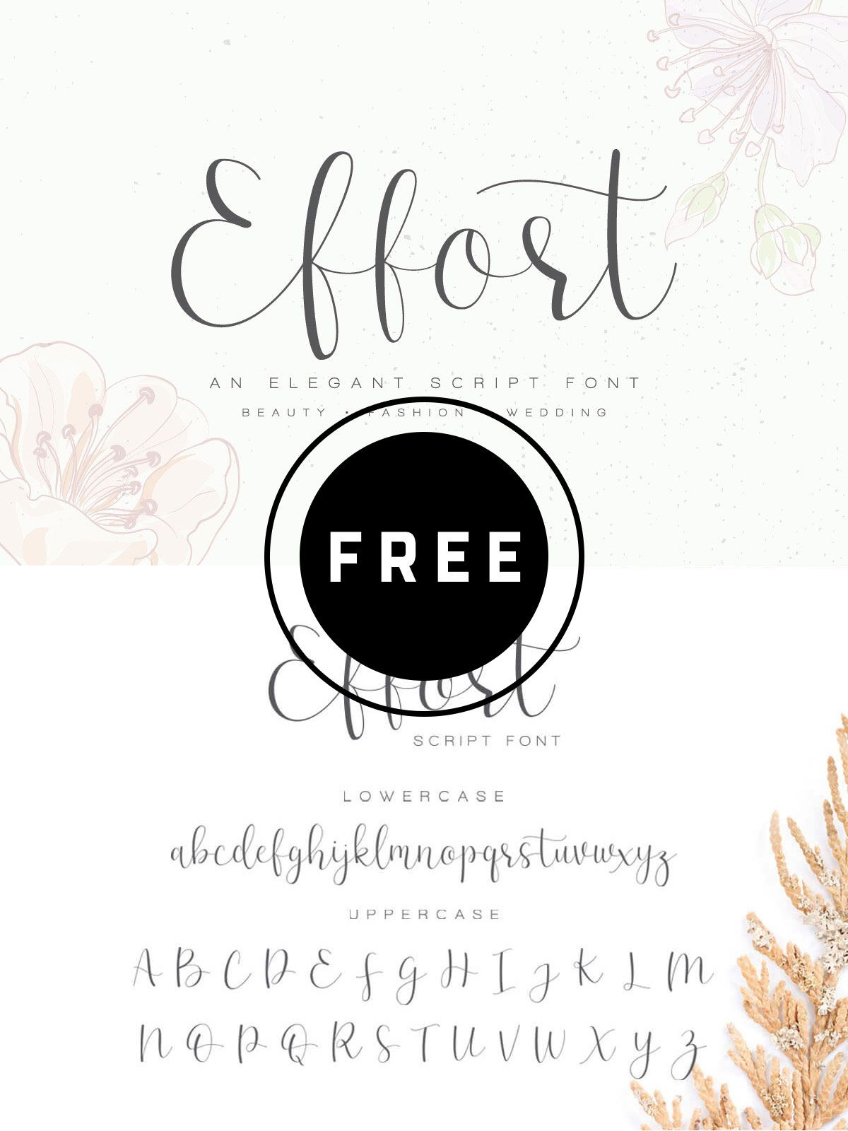 Free Effort Calligraphy Script Font Free Script Fonts Free Cursive Fonts Script Fonts