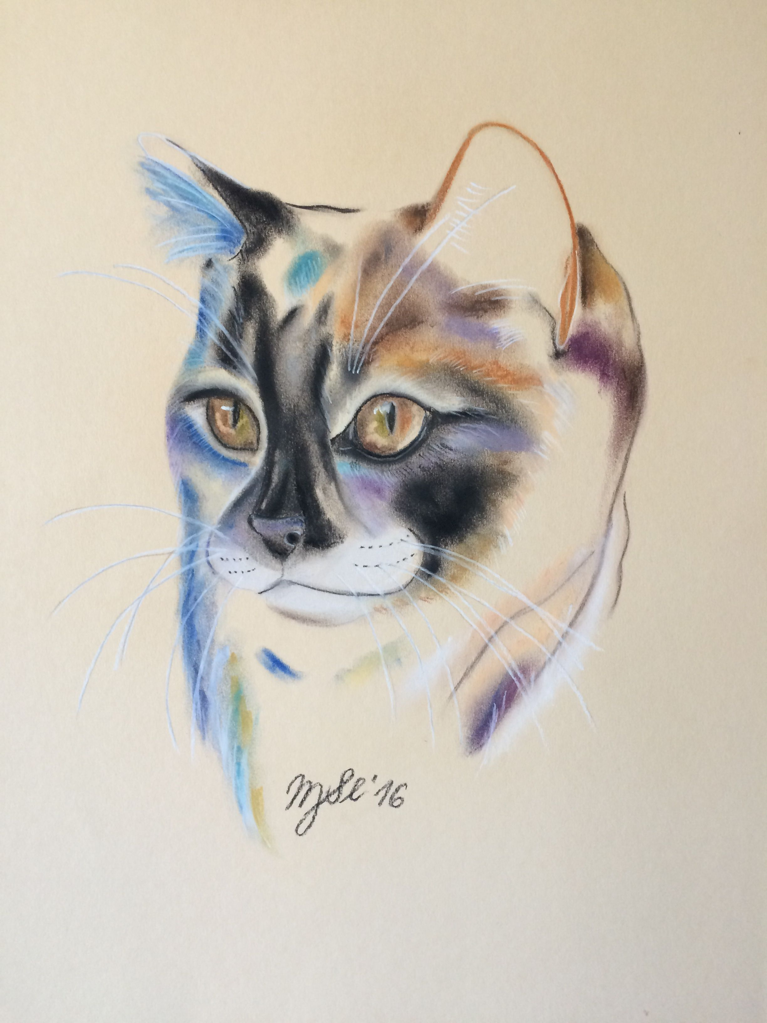 Katze, cat, chalk pastell ,  original artwork, Kunst, by MarikaSlickers