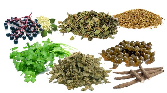 Top 7 Natural Detox Herbs For A Natural Cleanse | Health | Detox