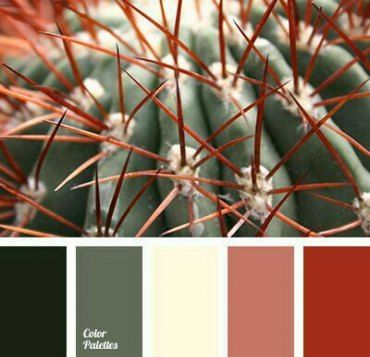 36 Ideas Kitchen Colors Schemes Colour Palettes Red images