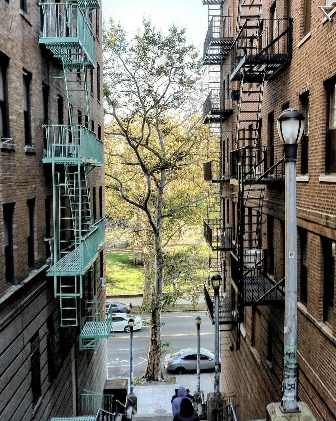 River Park Apartments Bronx: Looking Down A #stairstreet In #Highbridge, #the_Bronx