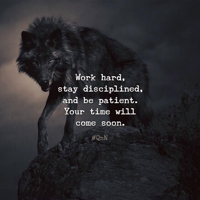 Work Hard Stay Disciplined And Be Patient Your Time Will Come Soon Study Motivation Quotes Strong Quotes Motivation