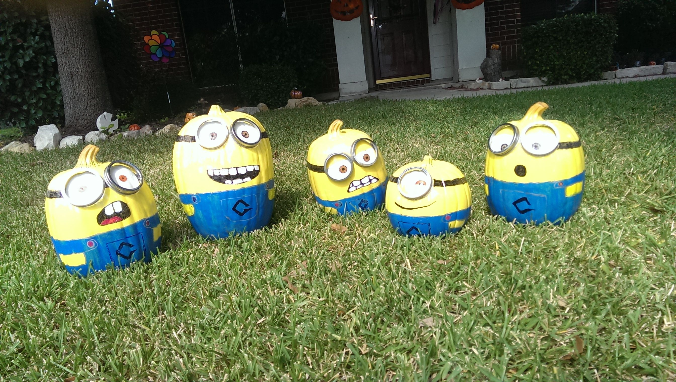 Our minions for Halloween. They will reside in the Minion Garden for a while.