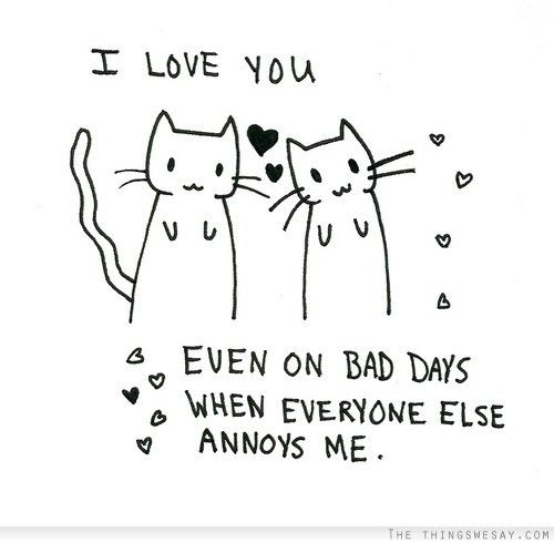 I love you even on bad days when everyone else annoys me quotes i love you even on bad days when everyone else annoys me cute cat quote voltagebd Gallery