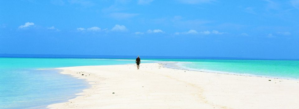 Mozambique Beach Google Search