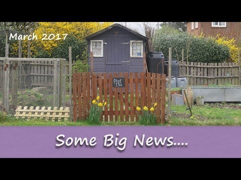 Katie's Allotment - March 2017 - Some Big News...