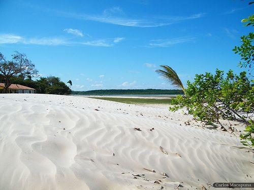 ilha do marajó pará soure - Pesquisa Google