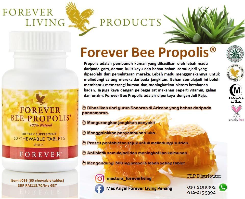 forever living propolis