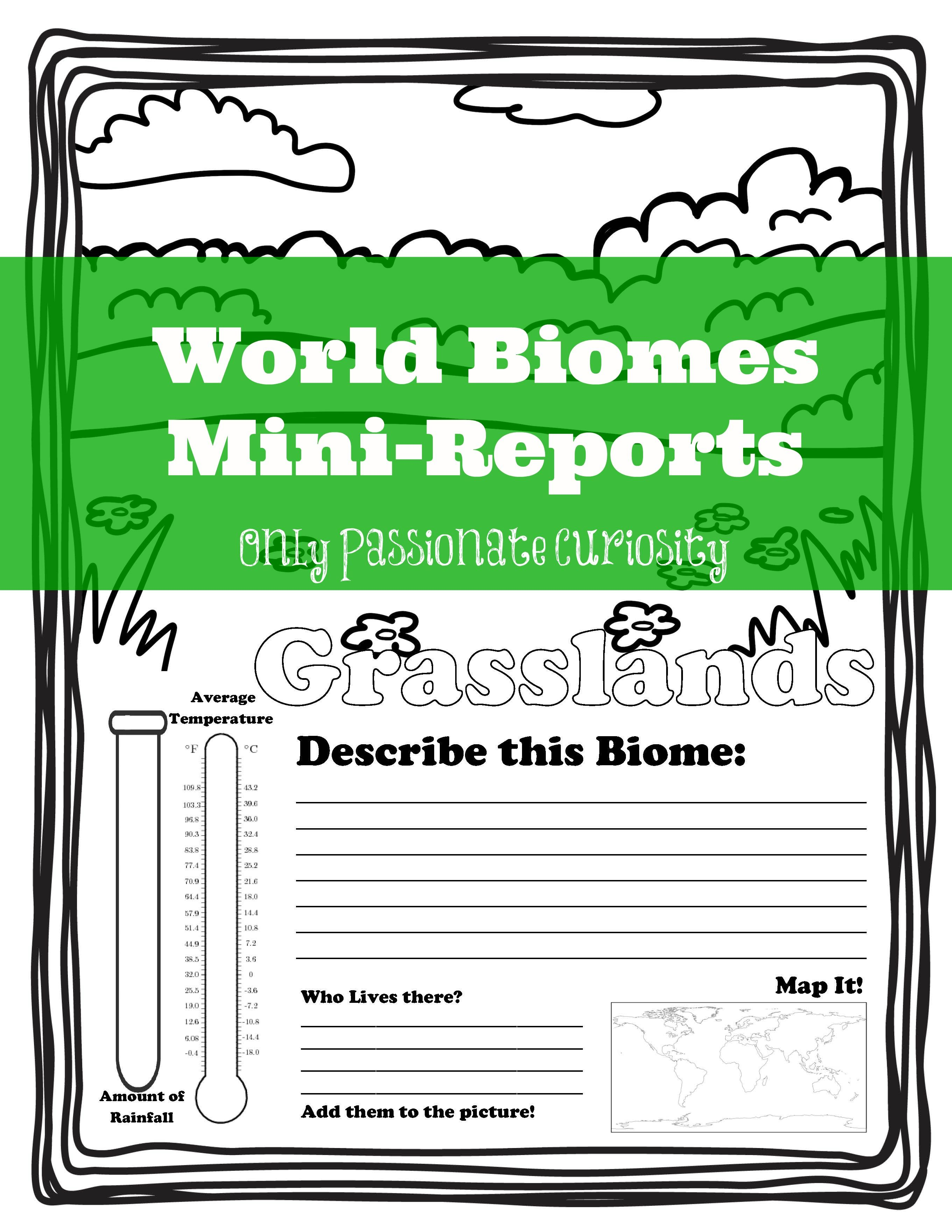 worksheet Biomes Of The World Worksheet learning about world biomes homeschool and geography biomes