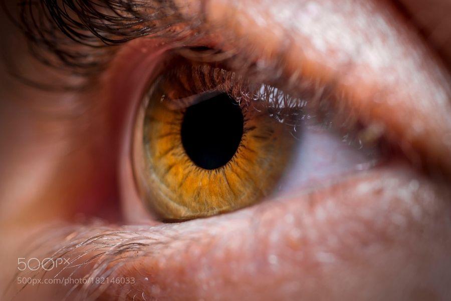 Brown Eyes By Davidabbs Go4fotos Hazel Eyes Eyes Eye Photography