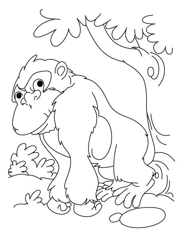 dibujos de gorilas para colorear e imprimir | cumpleaños varios ...