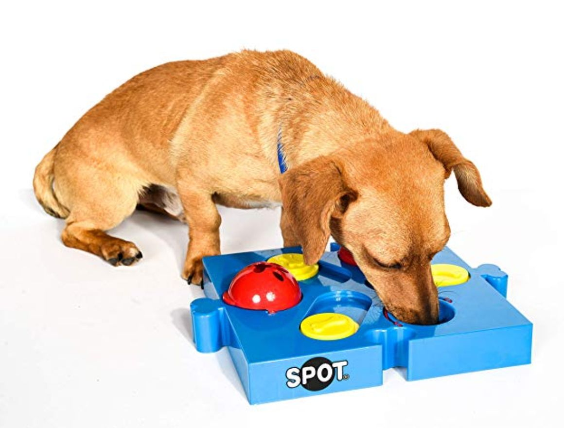 Interactive Puzzle Toys Are A Great Way To Keep Your Pup Out Of Trouble Https Amzn To 2zfovvr Dogmom Dogdad Dog Toys Smart Dog Toys Interactive Dog Toys