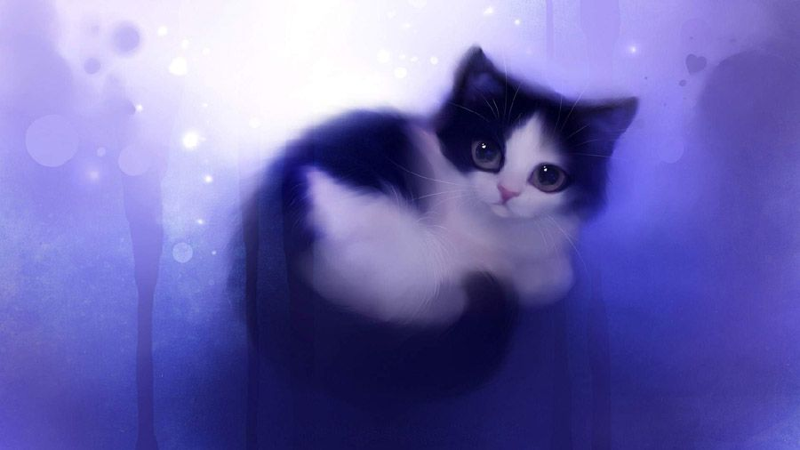 Cat Wallpaper Cartoon Cute Purple Hd Cat Wallpaper Papel De Parede De Gato Desenhos De Animais Fofinhos Gato De Anime