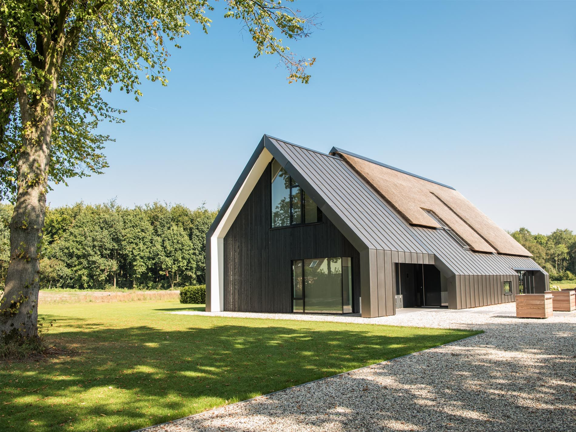 Maas architecten woonhuis peize riet zink titanium for Huizen architectuur