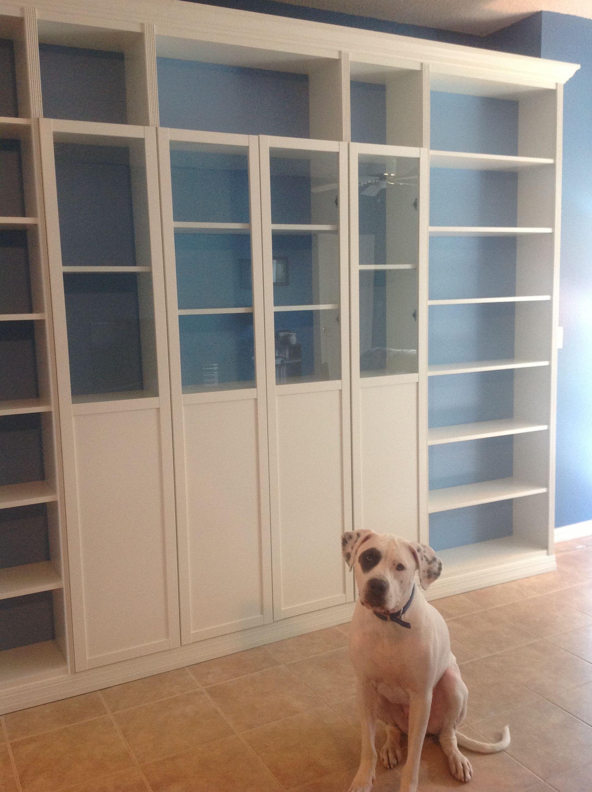 Custom Billy Bookcases Basement renovations, Family room