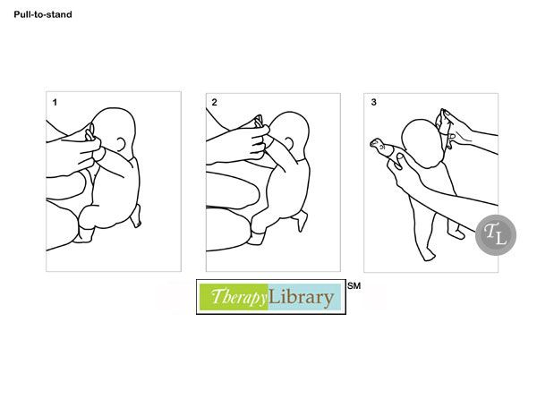Facilitating Pull to Stand in Pediatrics http