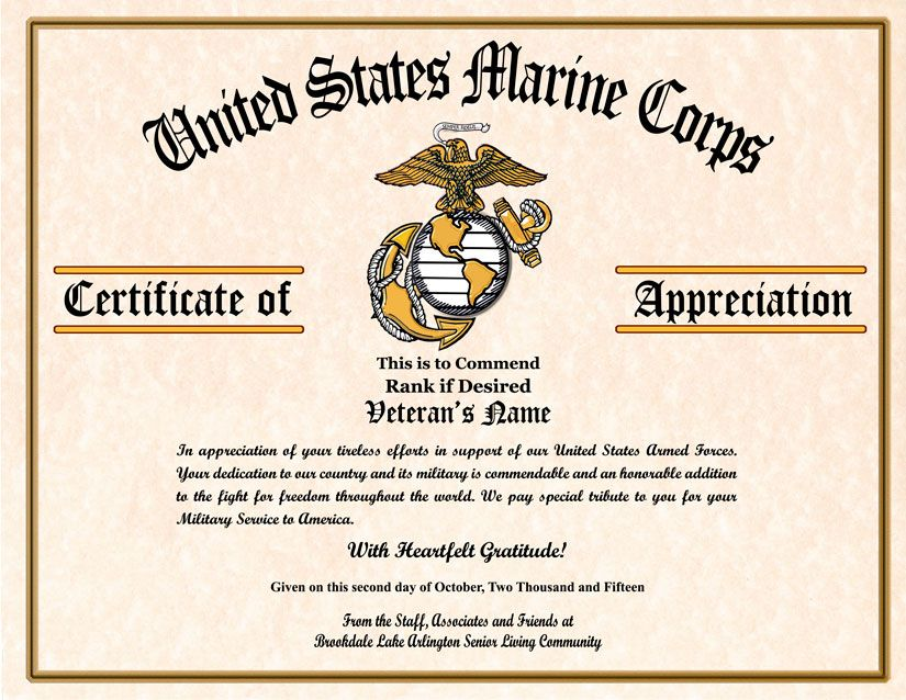 Military Veterans Appreciation Certificates Veterans day - military certificate of appreciation template