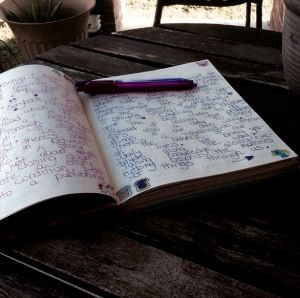This Is Her Diary – My Joyous Feature
