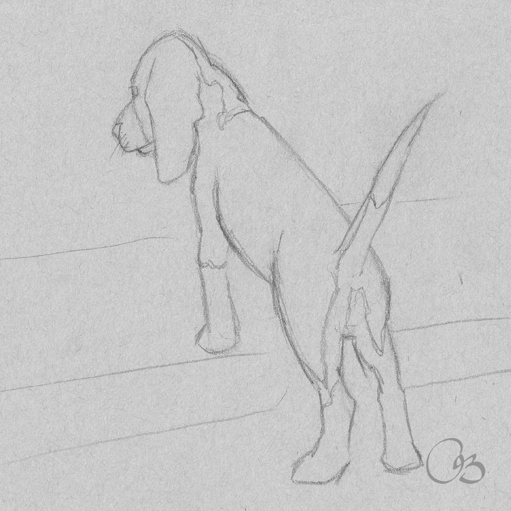 Dog Sketch Drawing Dog Sketch Beagle Art Dog Drawing