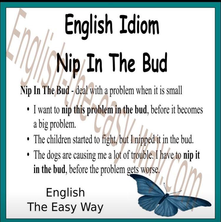 Nip in the bud idiom