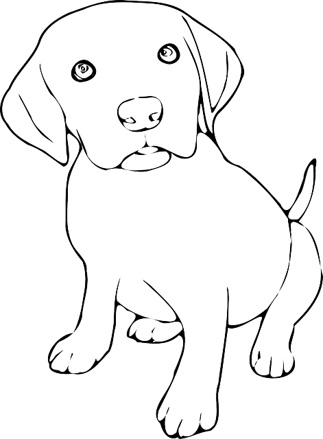 Free Image On Pixabay Dog Pup Puppy Labrador Lab Dog Line Art Dog Coloring Page Puppy Coloring Pages