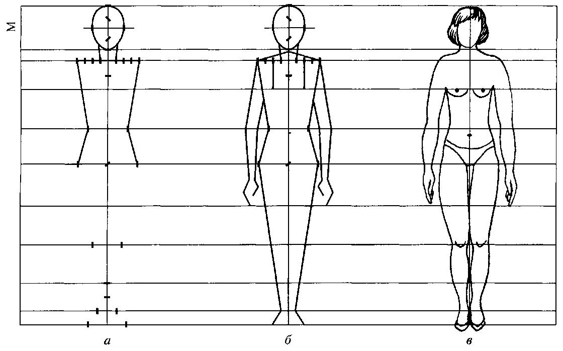 Картинка фигуры человека