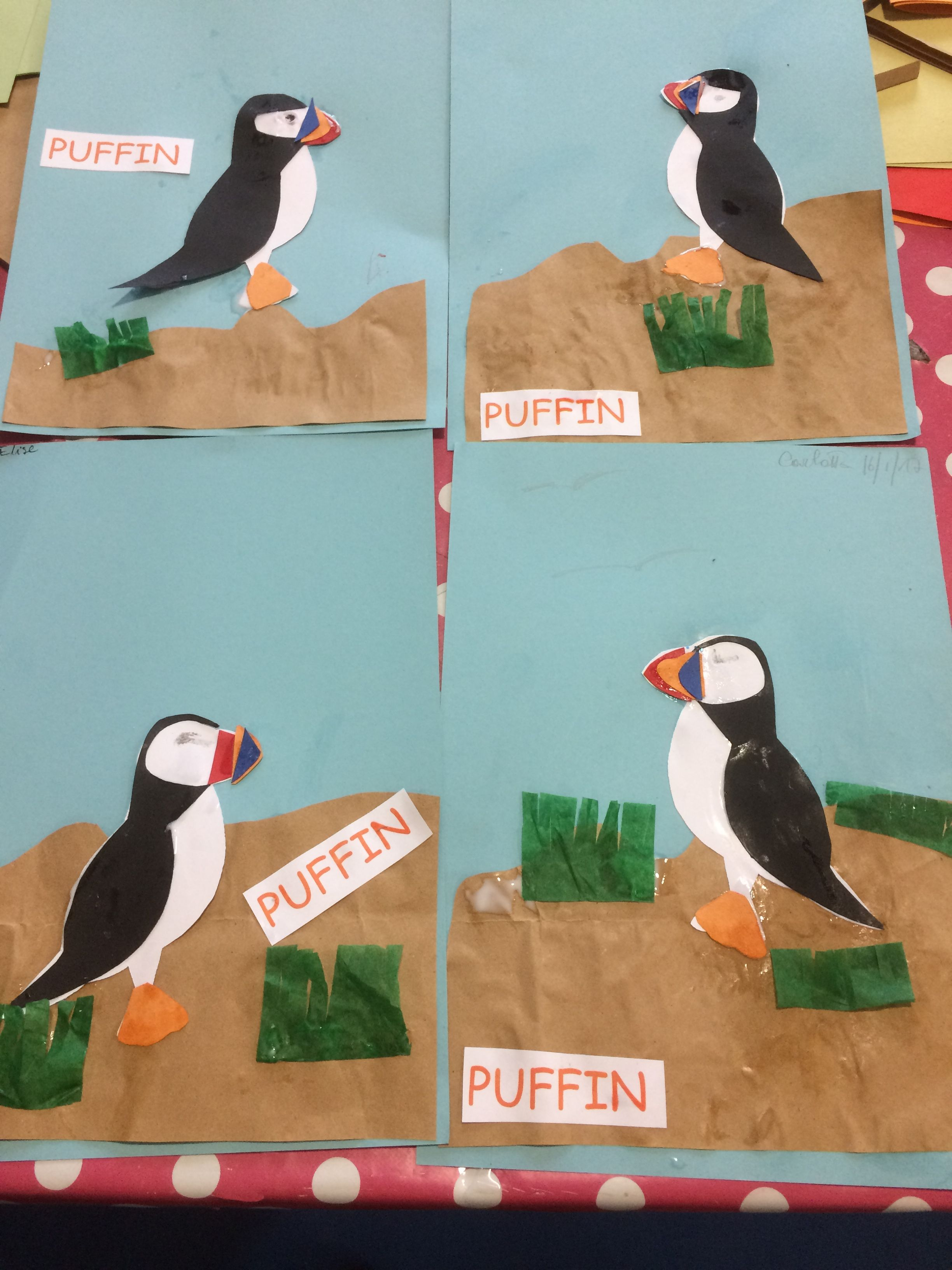 Puffins Or Pufflings School Ideas Crafts For Kids Playgroup
