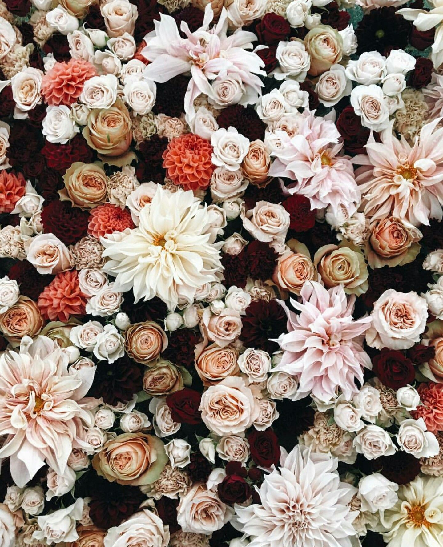 Color Scheme Flower Aesthetic Pretty Flowers Flowers