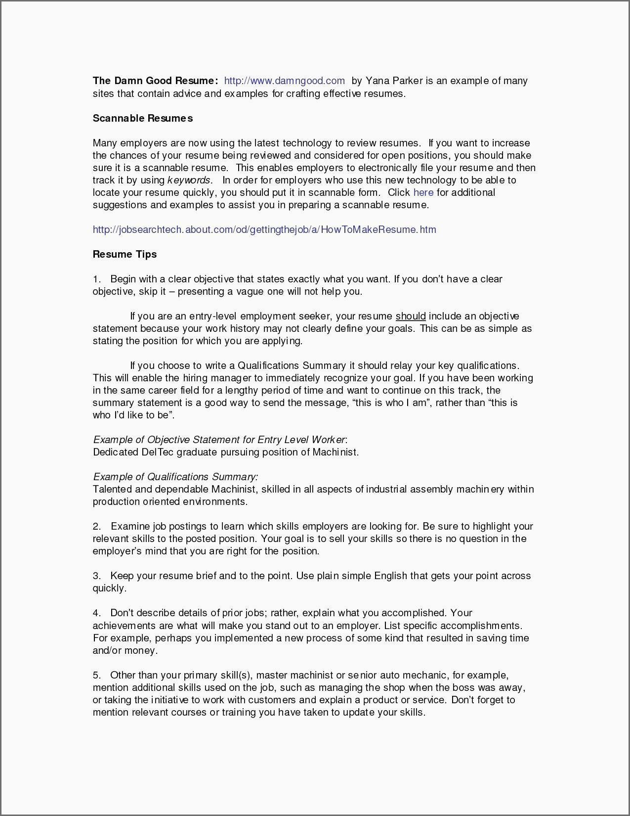 Examples Of Resume Summary Examples Of Resume Summary Examples