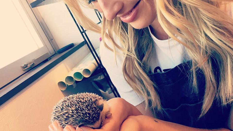 Margot Robbie visits a hedgehog cafe, and six other times celebs proved they're…