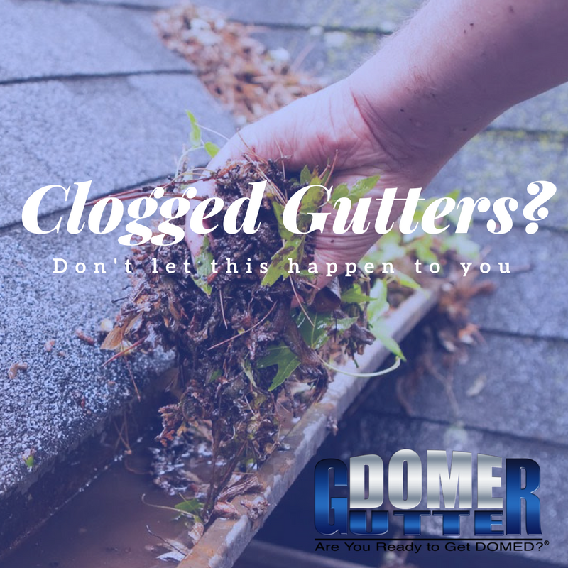 Learn about the costly damage and consequences that clogged gutters can cause.