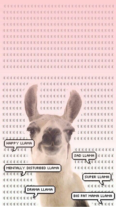 Imagen De Llama Wallpaper And Background Iphone Tumblr Phone Backgrounds