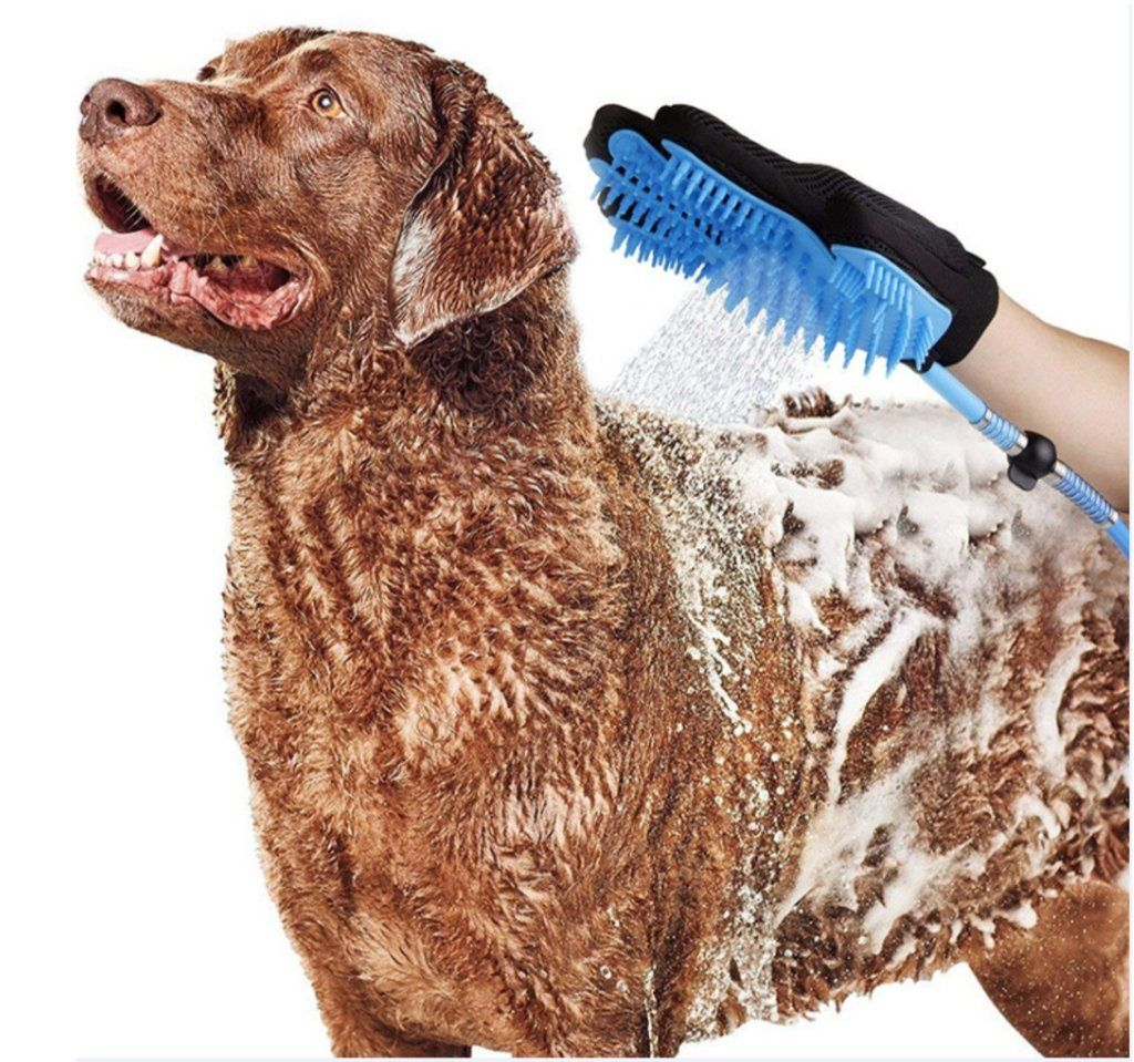How To Give A Dog A Bath Without Getting Water In Ears References