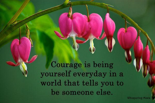 """""""Courage is being yourself everday in a world that tells you to be someone else."""" ~Crystal Paine"""