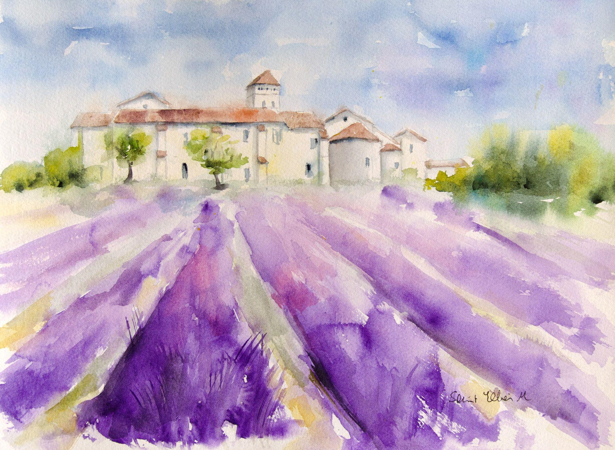 Aquarelle De Provence Champs De Lavande En Fleurs Peinture