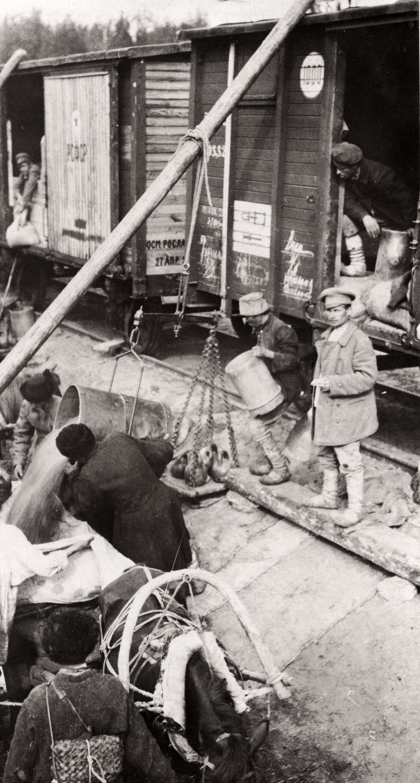 Россия 1921-1923 гг. в фотографиях западных ...