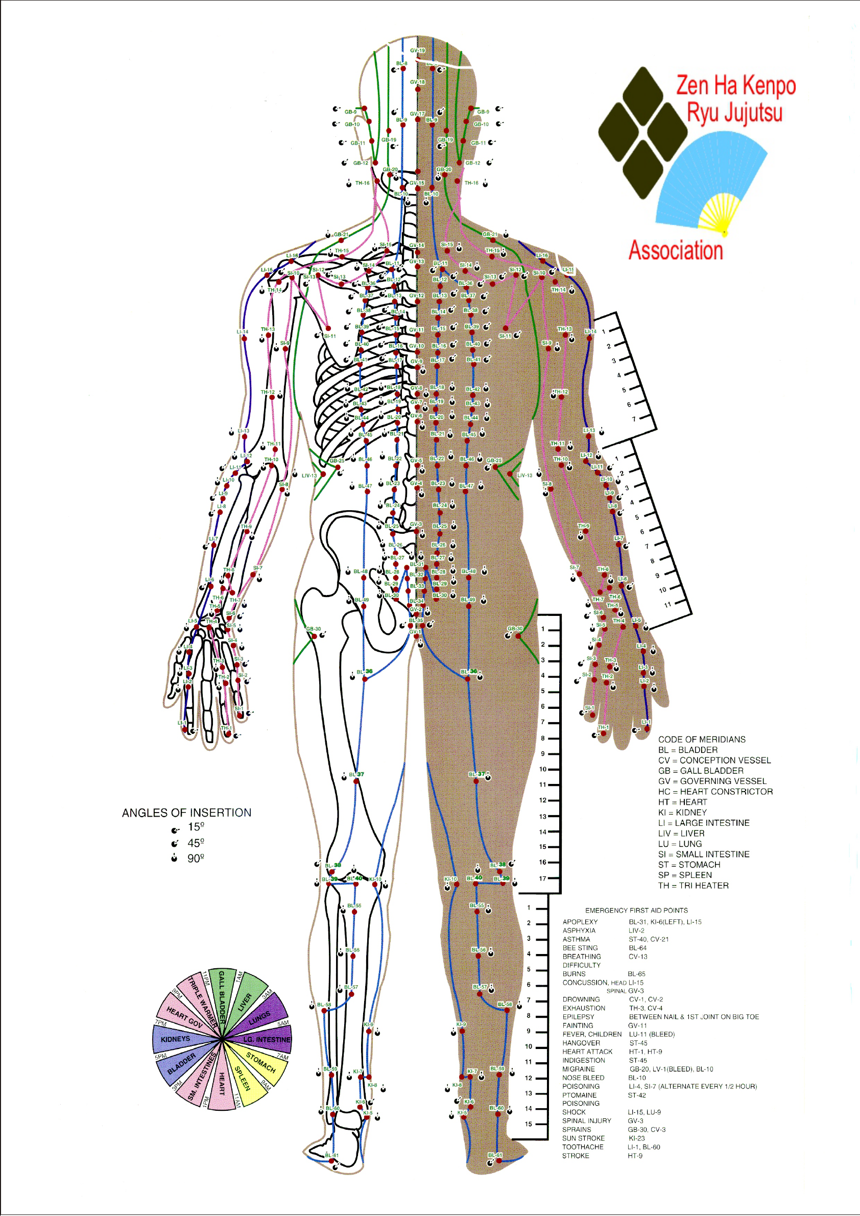 Free Pressure Point Chart Pdf 11480kb 5 Page S Page 2 In 2020 Pressure Points Chart Acupuncture Points Chart Acupressure Chart