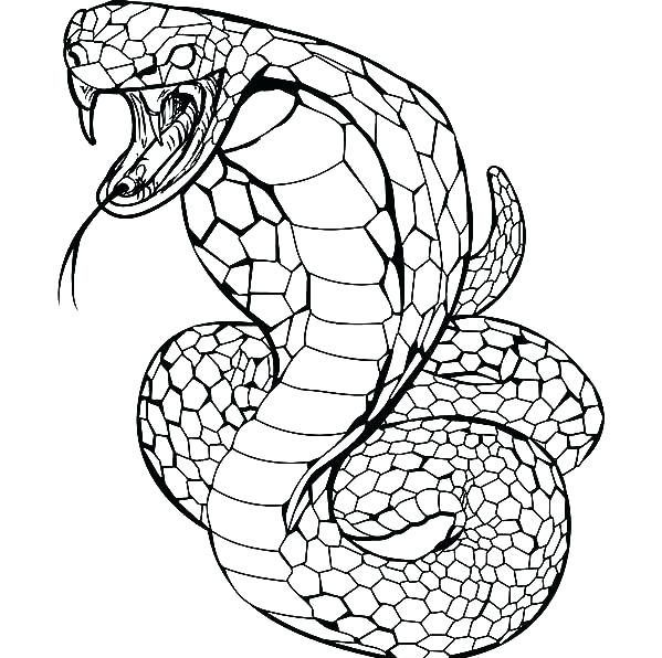cobra snake coloring pages angry