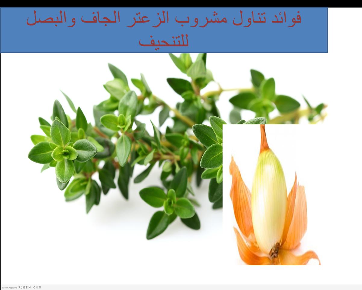 الزعتر الناشف مع البصل للتنحيف Herbs Plants Food