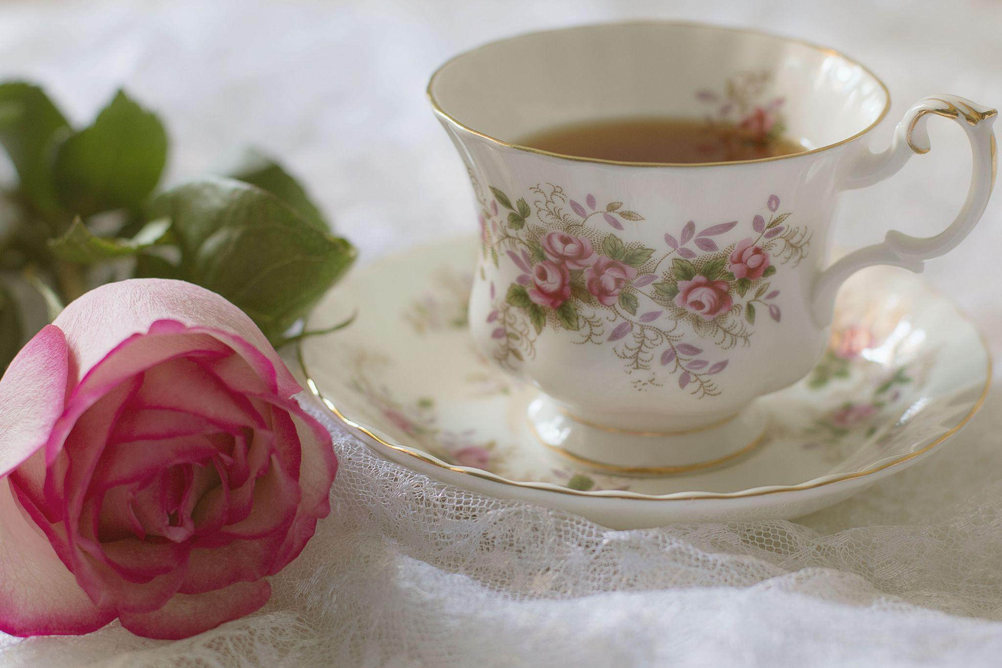 эта доброе утро картинки с розами нежными отдыха